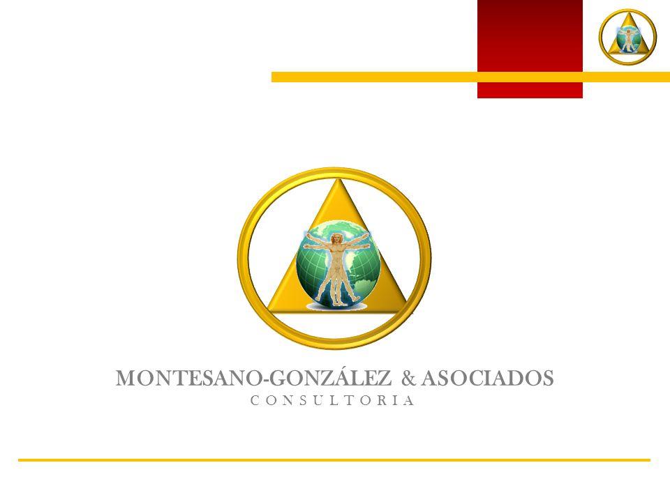 MONTESANO-GONZÁLEZ & ASOCIADOS CONSULTORIA