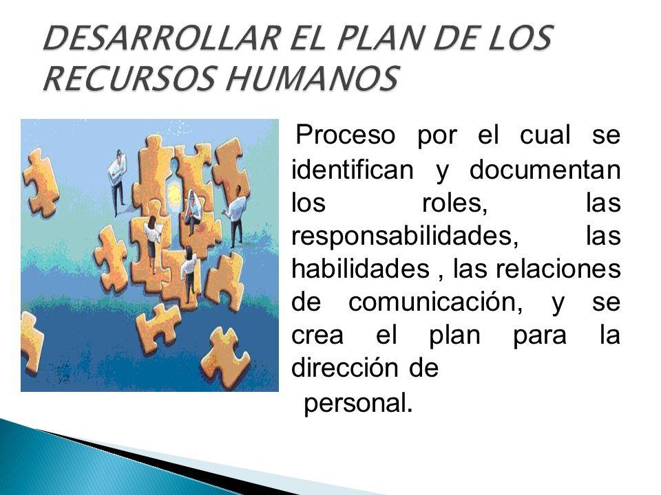 Proceso por el cual se identifican y documentan los roles, las responsabilidades, las habilidades, las relaciones de comunicación, y se crea el plan p