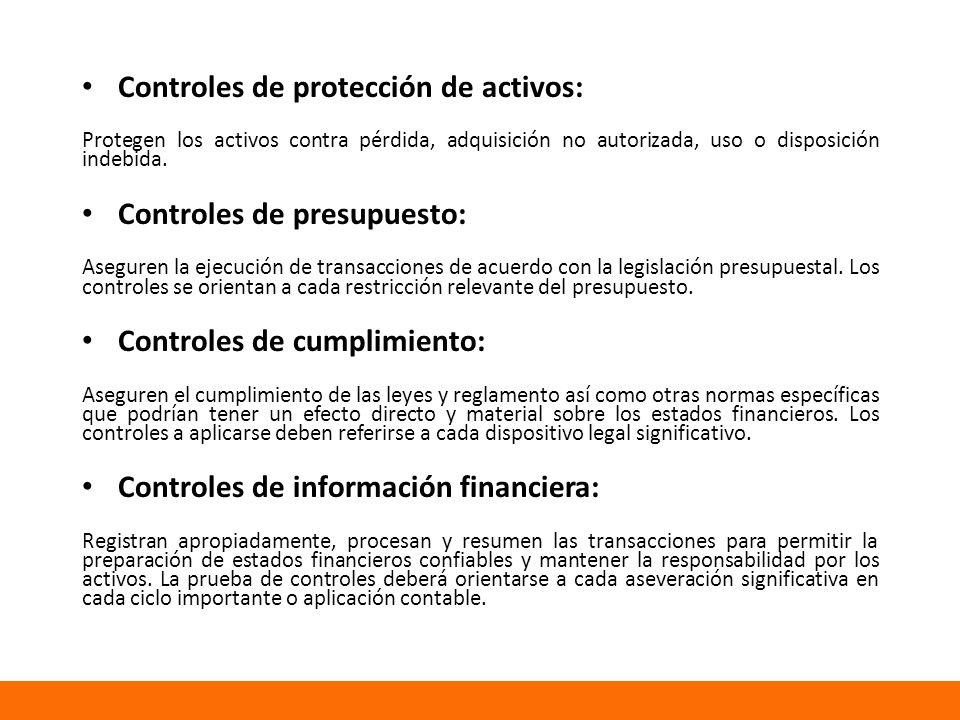 Controles de protección de activos: Protegen los activos contra pérdida, adquisición no autorizada, uso o disposición indebida.