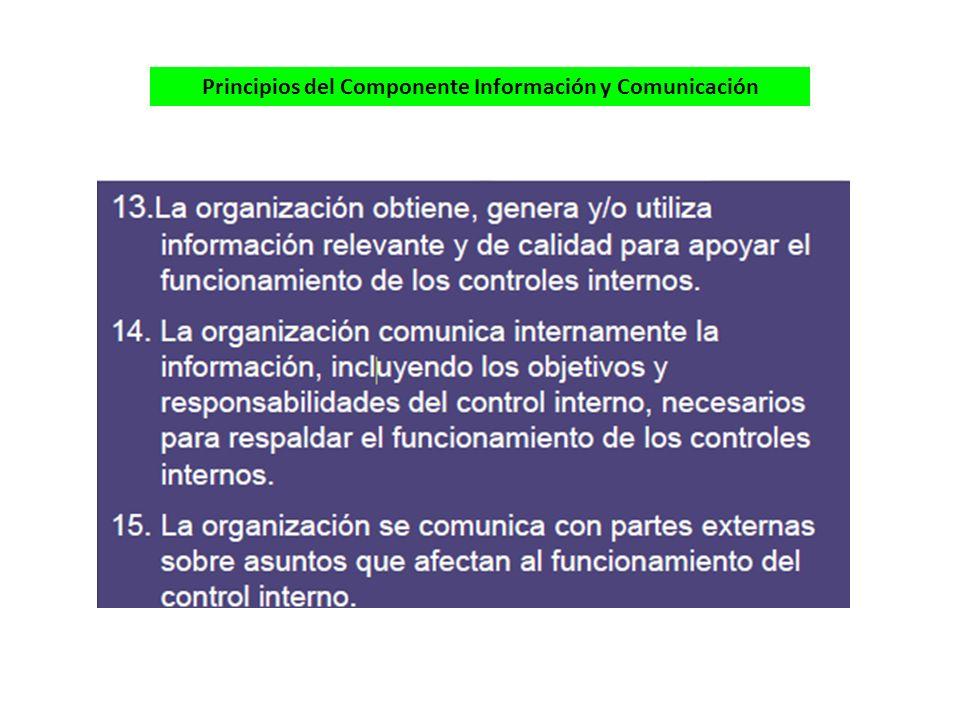 Principios del Componente Información y Comunicación