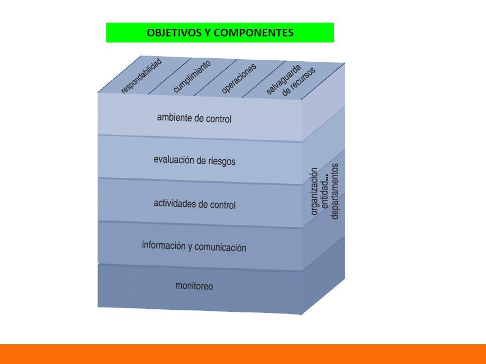 OBJETIVOS Y COMPONENTES