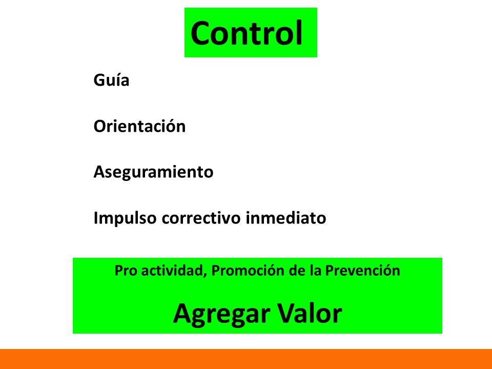 Guía Orientación Aseguramiento Impulso correctivo inmediato Pro actividad, Promoción de la Prevención Agregar Valor Control