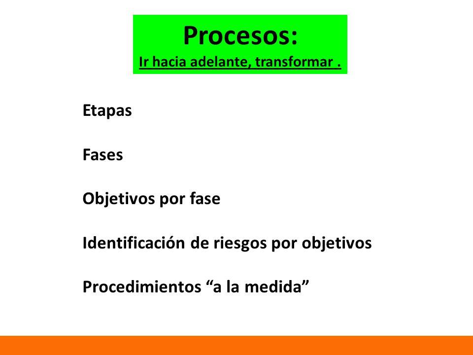 Etapas Fases Objetivos por fase Identificación de riesgos por objetivos Procedimientos a la medida Procesos: Ir hacia adelante, transformar.