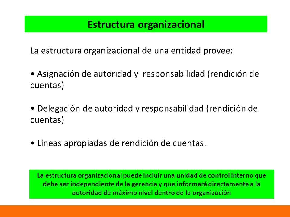 Estructura organizacional La estructura organizacional de una entidad provee: Asignación de autoridad y responsabilidad (rendición de cuentas) Delegación de autoridad y responsabilidad (rendición de cuentas) Líneas apropiadas de rendición de cuentas.