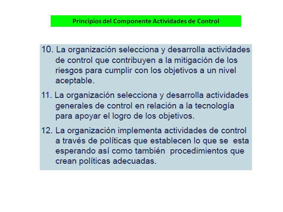 Principios del Componente Actividades de Control