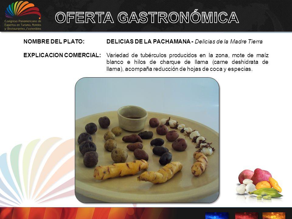 NOMBRE DEL PLATO:DELICIAS DE LA PACHAMANA - Delicias de la Madre Tierra EXPLICACION COMERCIAL: Variedad de tubérculos producidos en la zona, mote de m