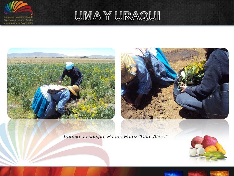Trabajo de campo, Puerto Pérez Dña. Alicia