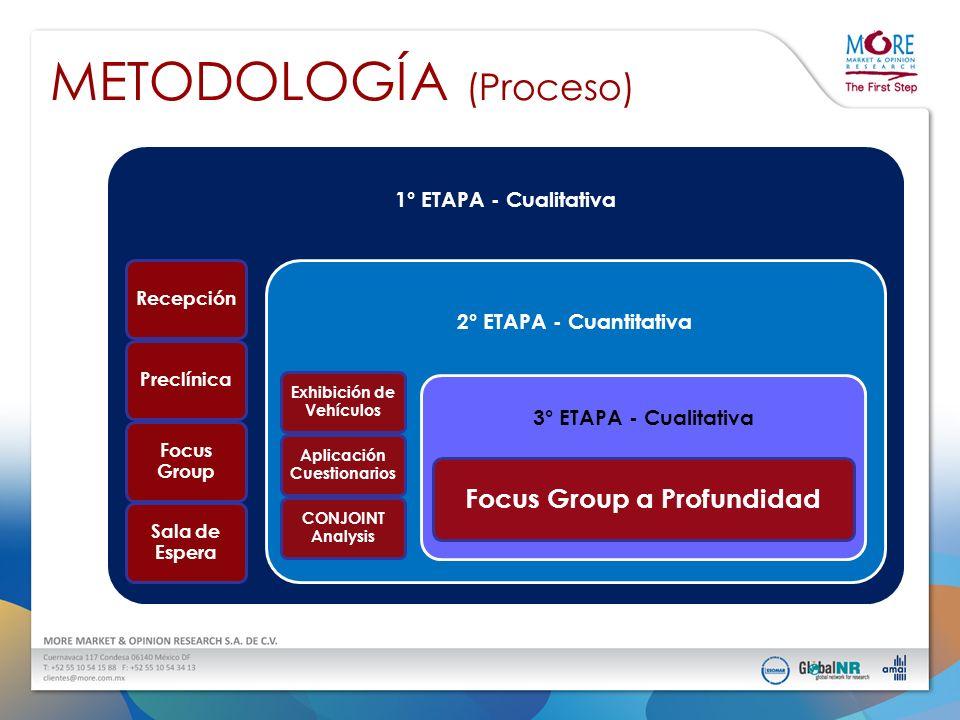 METODOLOGÍA (Proceso) ETAPAS EN EL DIAGNÓSTICO DE LOS MODELOS TANTO NUEVOS COMO EN RELANZAMIENTOS 1° ETAPA - Cualitativa RecepciónPreclínica Focus Gro