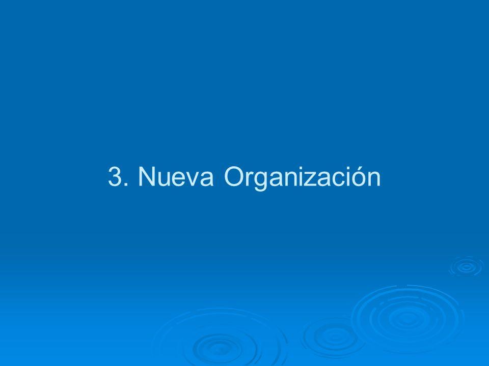 3. Nueva Organización
