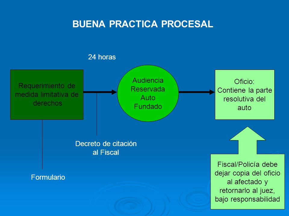 Requerimiento de medida limitativa de derechos Audiencia Reservada Auto Fundado Oficio: Contiene la parte resolutiva del auto BUENA PRACTICA PROCESAL