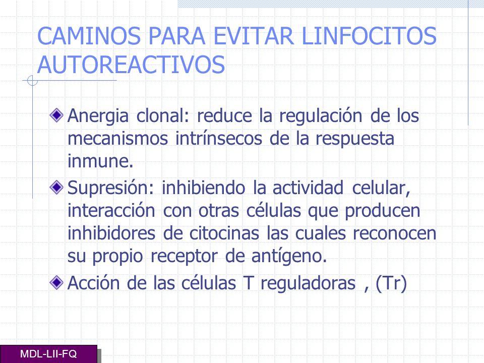 CAMINOS PARA EVITAR LINFOCITOS AUTOREACTIVOS Anergia clonal: reduce la regulación de los mecanismos intrínsecos de la respuesta inmune. Supresión: inh