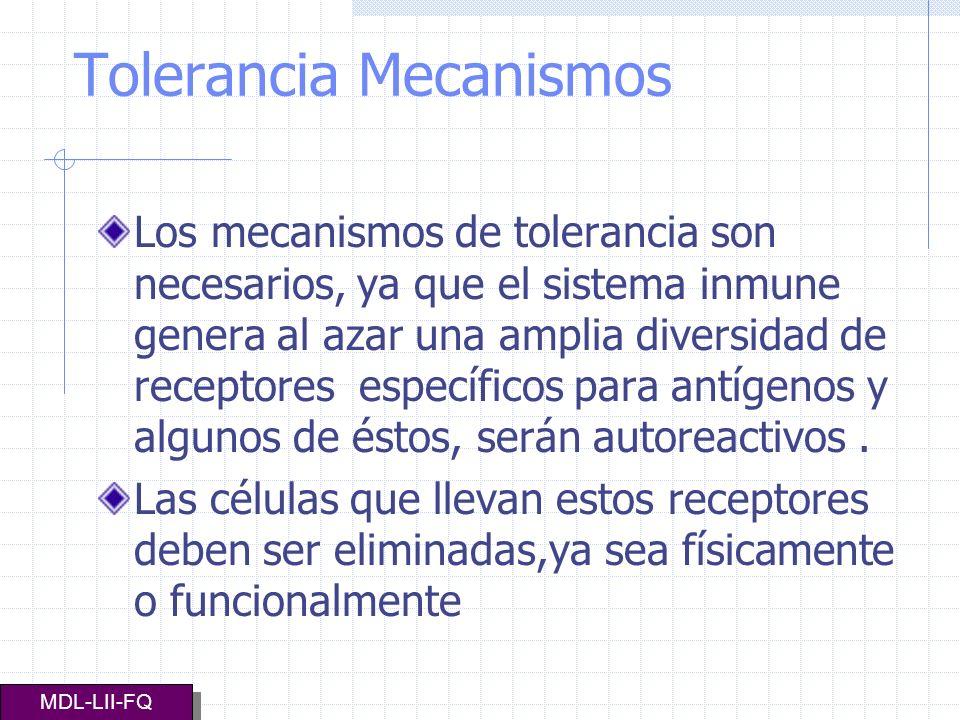 Tolerancia Mecanismos Los mecanismos de tolerancia son necesarios, ya que el sistema inmune genera al azar una amplia diversidad de receptores específ