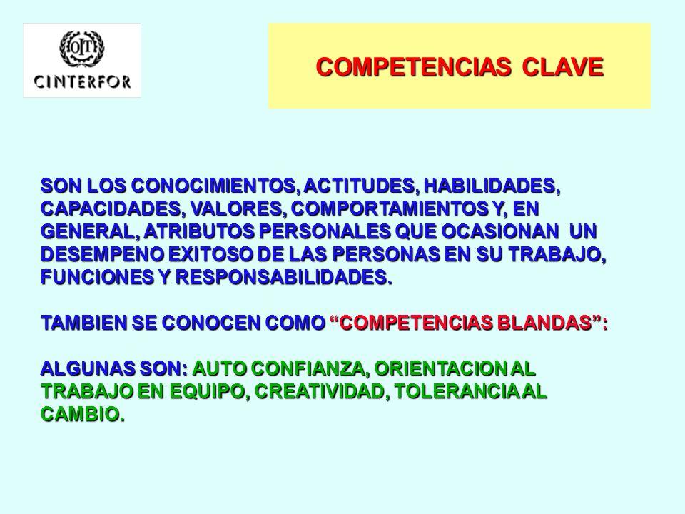 CARACTERISTICAS COMUNES DE LA COMPETENCIA LABORAL ORIENTADA AL DESEMPENO EN EL TRABAJO SE VERIFICA EN EL DESEMPENO BAJO SITUACIONES LABORALES DEFINIDA