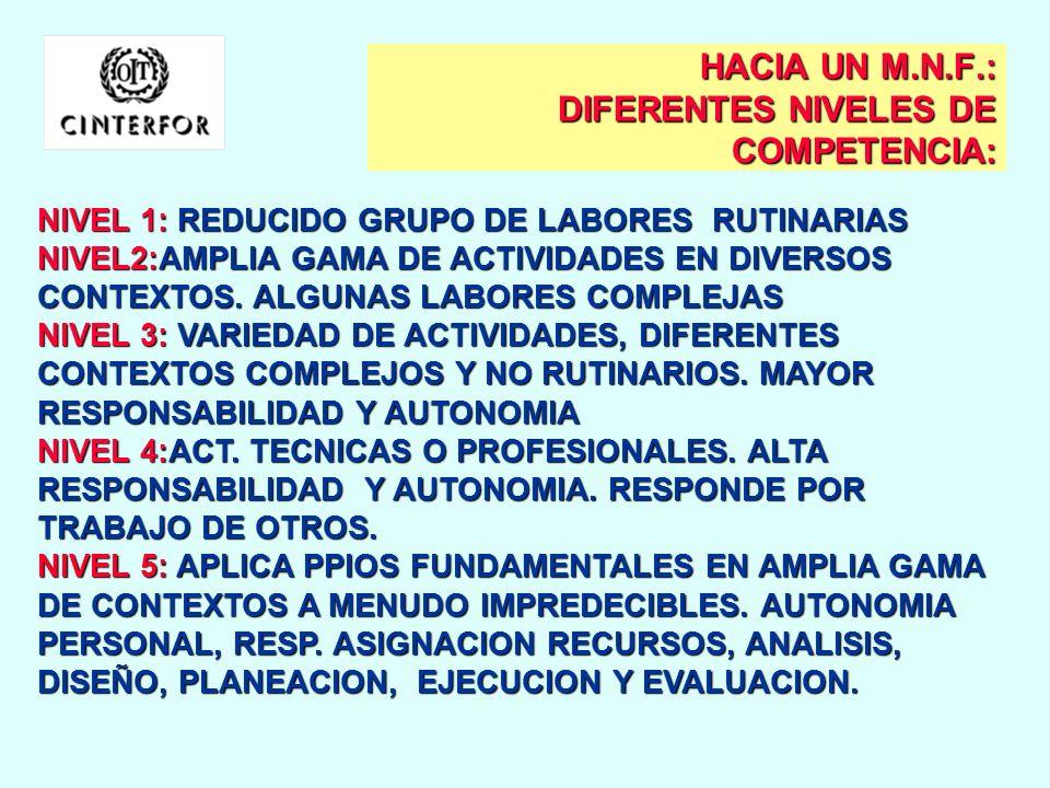 HACIA UN M.N.F.: LAS AREAS OCUPACIONALES: AREAS DE DESEMPEÑO LABORAL: FINANZAS Y ADMNISTRACIONFINANZAS Y ADMNISTRACION CIENCIAS NAT. APLICADAS Y OCUP.