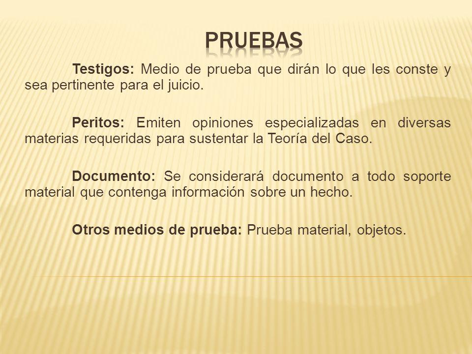 - Se realiza una pregunta con la intención de que el testigo proporcione información sobre la evidencia material.