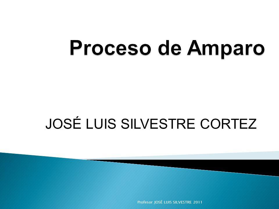 JOSÉ LUIS SILVESTRE CORTEZ Profesor JOSÉ LUIS SILVESTRE 2011