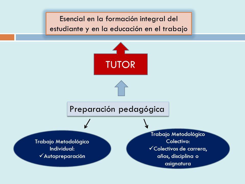 Esencial en la formación integral del estudiante y en la educación en el trabajo Preparación pedagógica Trabajo Metodológico Individual: Autopreparación Trabajo Metodológico Colectivo: Colectivos de carrera, años, disciplina o asignatura TUTOR