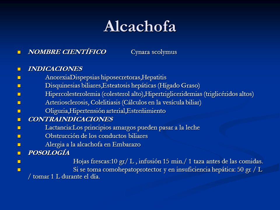 Alcachofa NOMBRE CIENTÍFICO Cynara scolymus NOMBRE CIENTÍFICO Cynara scolymus INDICACIONES INDICACIONES AnorexiaDispepsias hiposecretoras,Hepatitis An