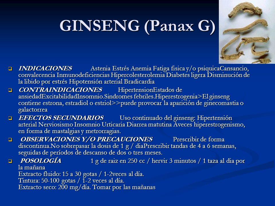 GINSENG (Panax G) INDICACIONES Astenia Estrés Anemia Fatiga fisica y/o psiquicaCansancio, convalecencia Inmunodeficiencias Hipercolesterolemia Diabete