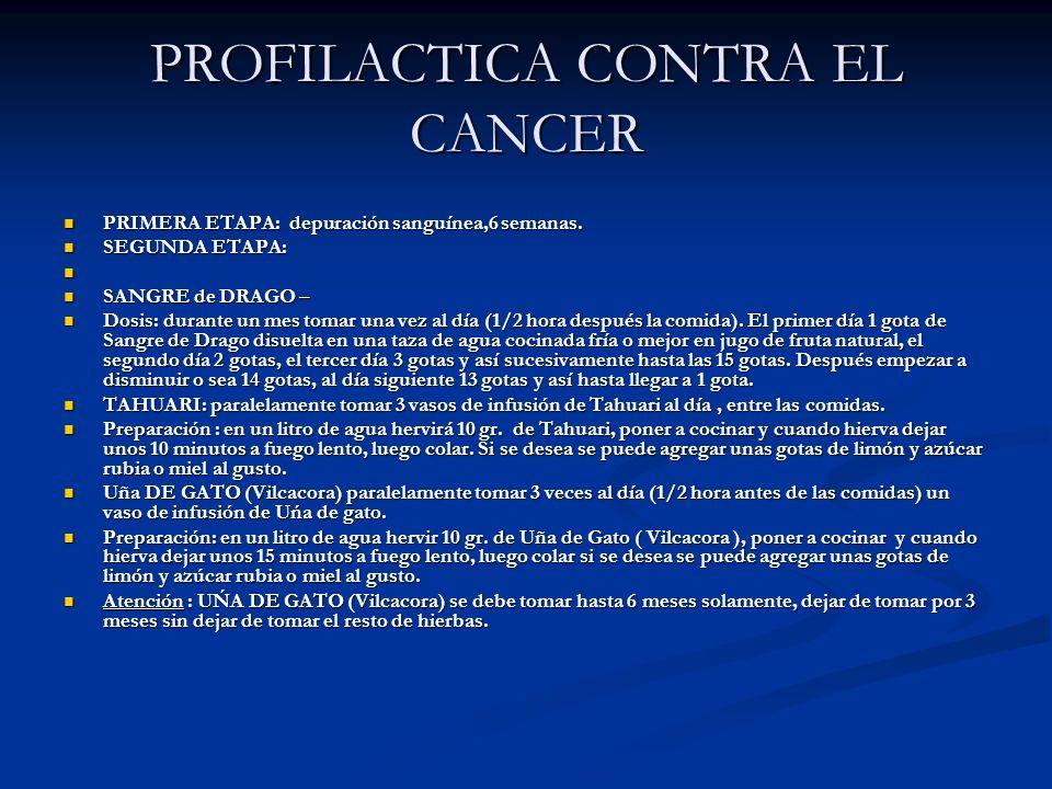 PROFILACTICA CONTRA EL CANCER PRIMERA ETAPA: depuración sanguínea,6 semanas. PRIMERA ETAPA: depuración sanguínea,6 semanas. SEGUNDA ETAPA: SEGUNDA ETA