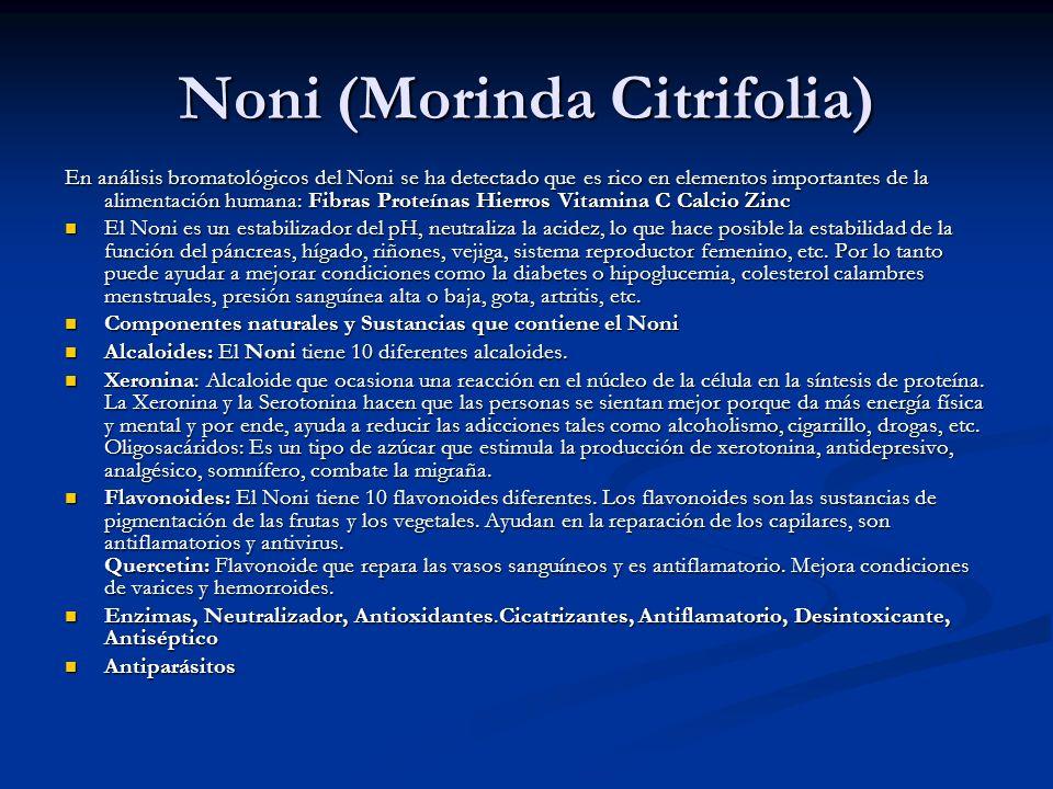 Noni (Morinda Citrifolia) En análisis bromatológicos del Noni se ha detectado que es rico en elementos importantes de la alimentación humana: Fibras P