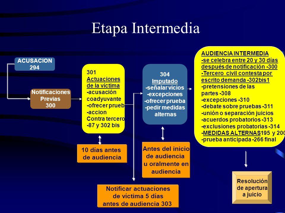 Etapa Intermedia Notificaciones Previas 300 301 Actuaciones de la víctima -acusación coadyuvante -ofrecer prueba -accion Contra tercero -87 y 302 bis