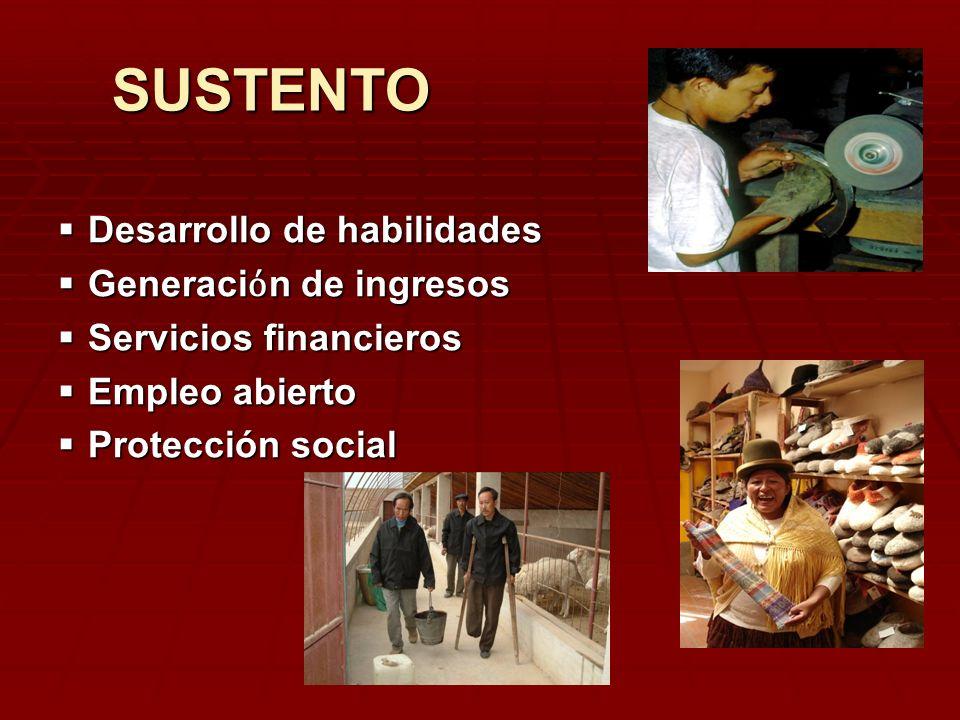 Desarrollo de habilidades Desarrollo de habilidades Generaci n de ingresos Generaci n de ingresos Servicios financieros Servicios financieros Empleo a