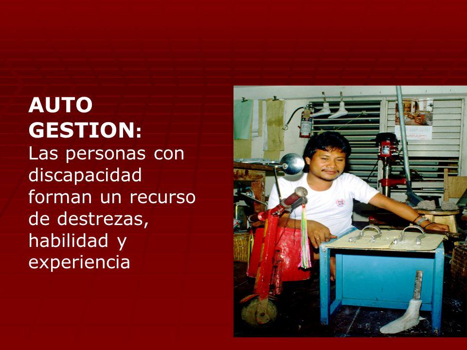 AUTO GESTION : Las personas con discapacidad forman un recurso de destrezas, habilidad y experiencia