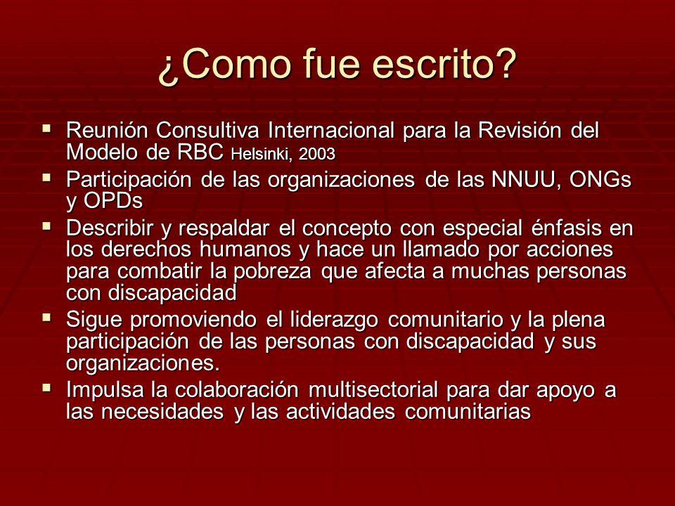 ¿Como fue escrito? Reunión Consultiva Internacional para la Revisión del Modelo de RBC Helsinki, 2003 Reunión Consultiva Internacional para la Revisió