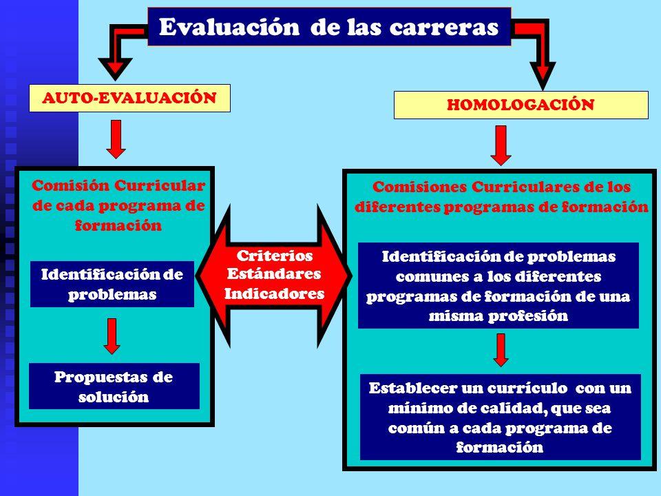 AUTO-EVALUACIÓN HOMOLOGACIÓN Identificación de problemas Propuestas de solución Identificación de problemas comunes a los diferentes programas de form