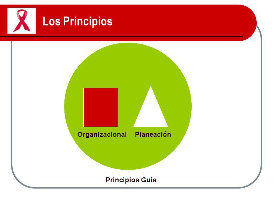 Los Principios Principios Guía OrganizacionalPlaneación