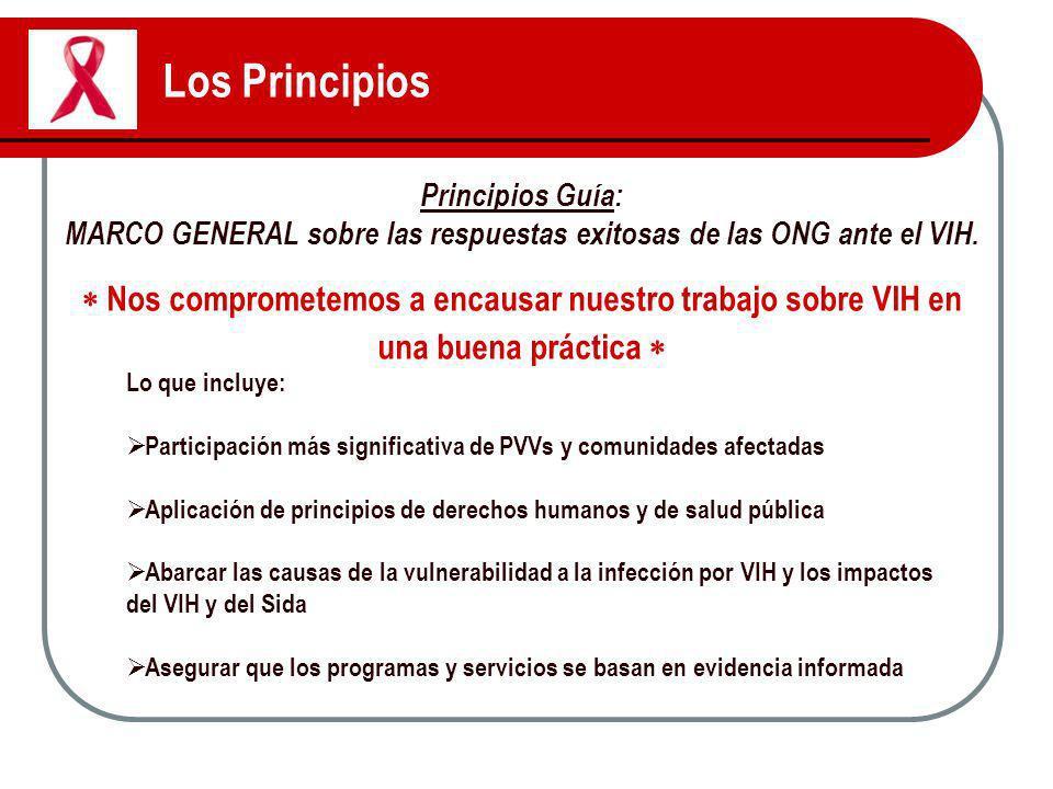 Los Principios Principios Guía: MARCO GENERAL sobre las respuestas exitosas de las ONG ante el VIH. Nos comprometemos a encausar nuestro trabajo sobre