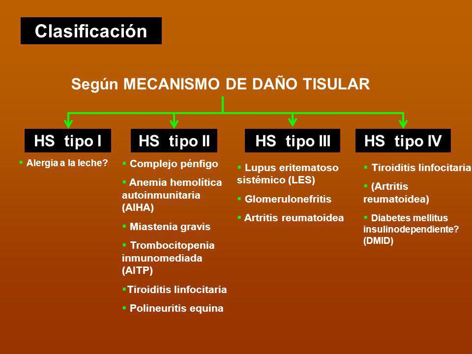 Clasificación Según MECANISMO DE DAÑO TISULAR HS tipo I HS tipo IIHS tipo IIIHS tipo IV Alergia a la leche? Complejo pénfigo Anemia hemolítica autoinm