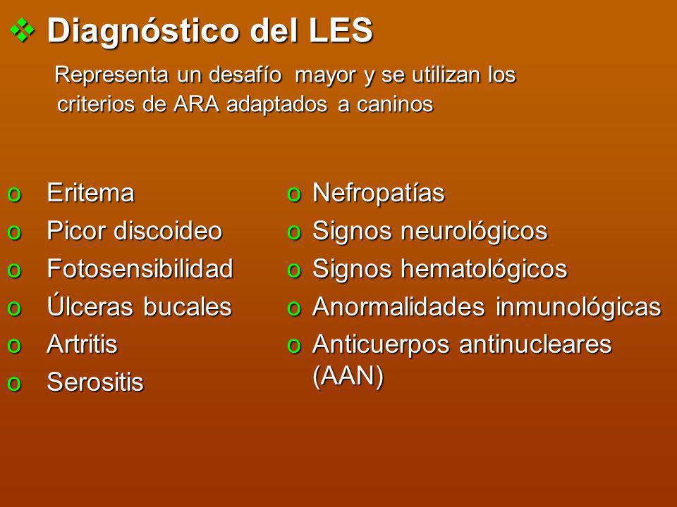 Diagnóstico del LES Representa un desafío mayor y se utilizan los criterios de ARA adaptados a caninos Diagnóstico del LES Representa un desafío mayor