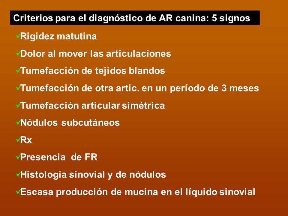 Criterios para el diagnóstico de AR canina: 5 signos Rigidez matutina Dolor al mover las articulaciones Tumefacción de tejidos blandos Tumefacción de