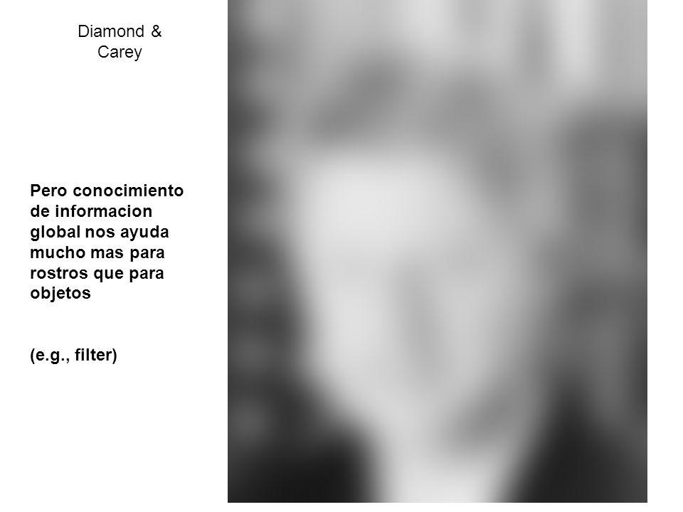 Diamond & Carey Pero conocimiento de informacion global nos ayuda mucho mas para rostros que para objetos (e.g., filter)