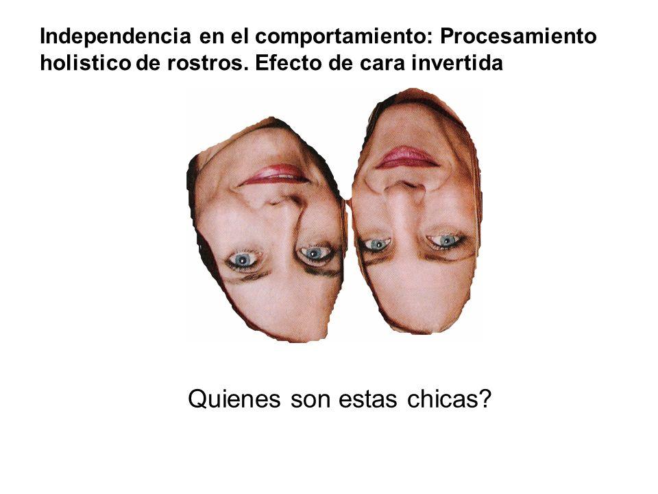 Quienes son estas chicas? Independencia en el comportamiento: Procesamiento holistico de rostros. Efecto de cara invertida
