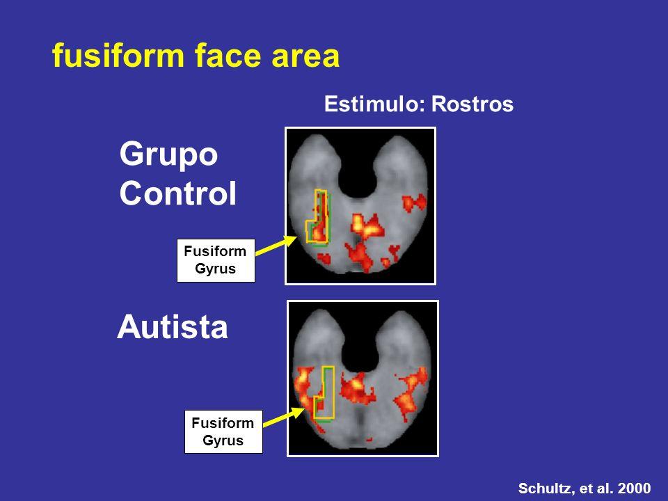 Grupo Control Autista fusiform face area Schultz, et al. 2000 Estimulo: Rostros Fusiform Gyrus Fusiform Gyrus