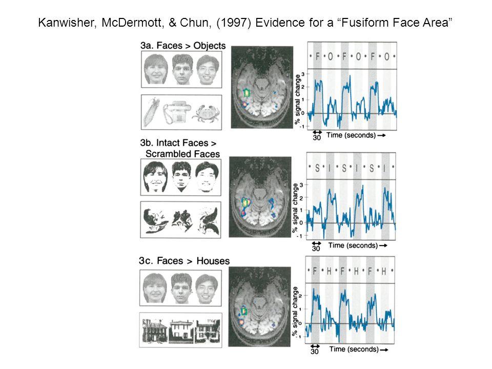 Kanwisher, McDermott, & Chun, (1997) Evidence for a Fusiform Face Area