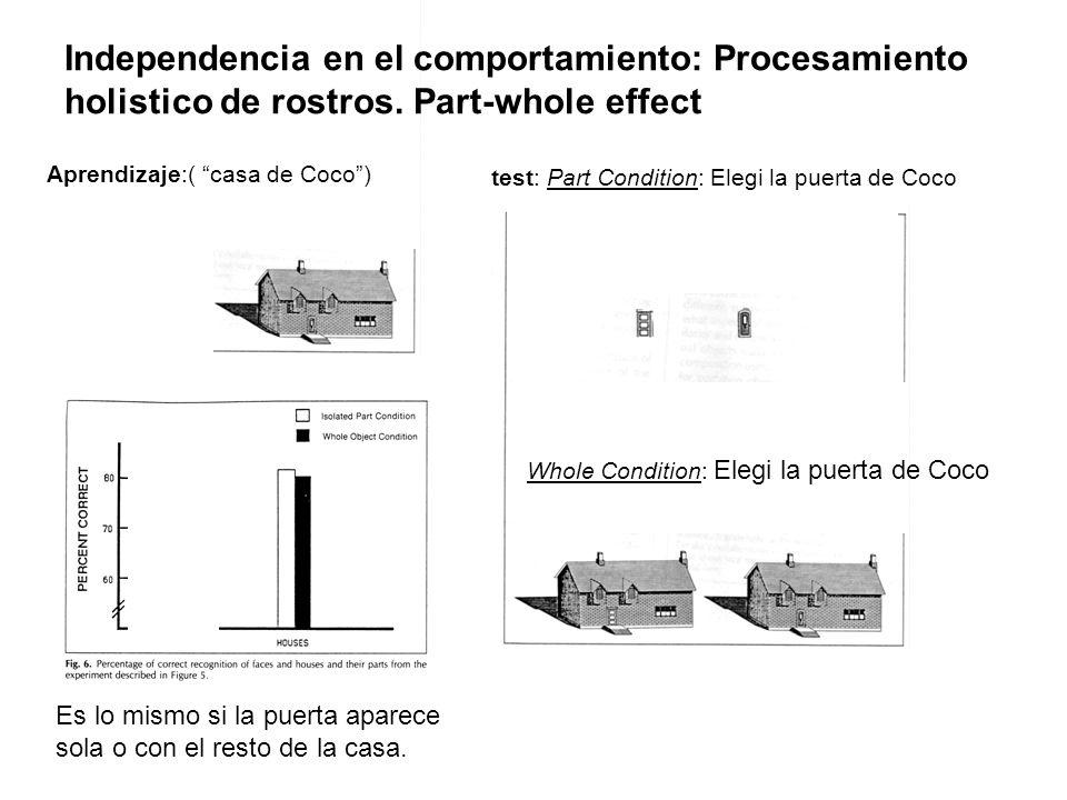 Aprendizaje:( casa de Coco) Independencia en el comportamiento: Procesamiento holistico de rostros. Part-whole effect test: Part Condition: Elegi la p