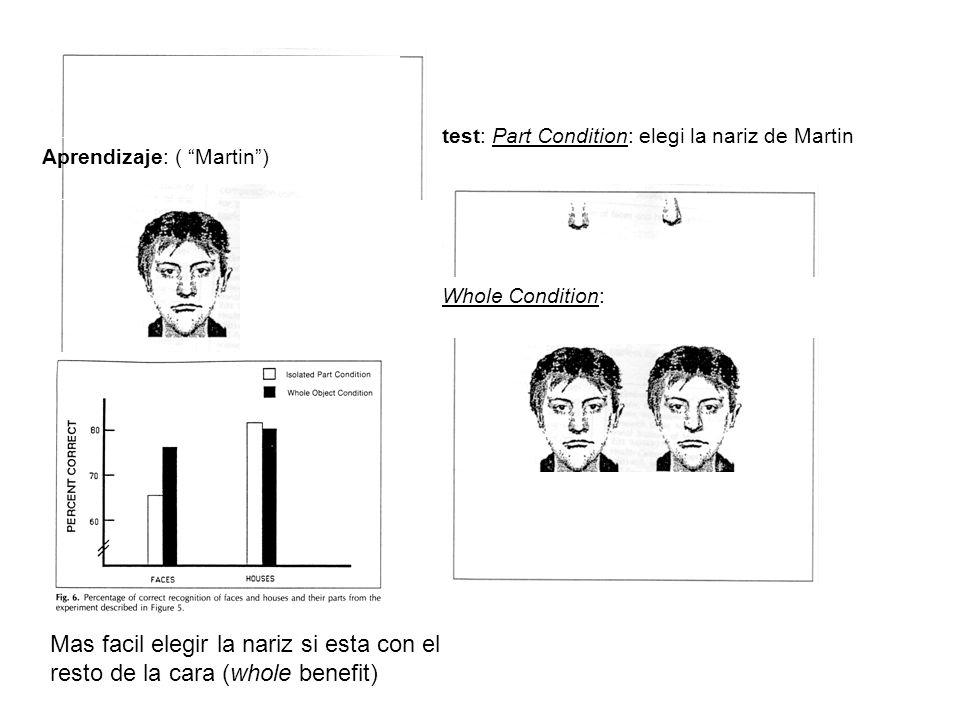 Aprendizaje: ( Martin) Mas facil elegir la nariz si esta con el resto de la cara (whole benefit) Whole Condition: test: Part Condition: elegi la nariz