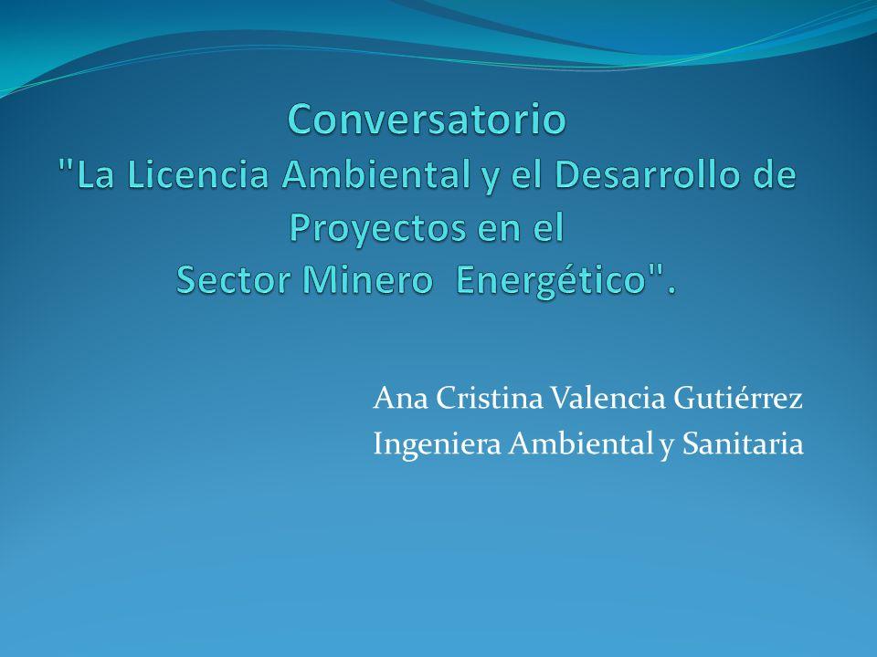 Ana Cristina Valencia Gutiérrez Ingeniera Ambiental y Sanitaria
