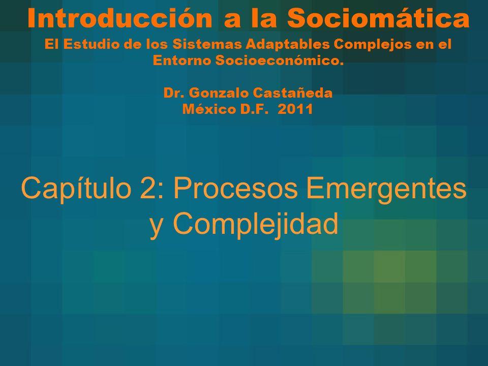 Introducción a la Sociomática El Estudio de los Sistemas Adaptables Complejos en el Entorno Socioeconómico. Dr. Gonzalo Castañeda México D.F. 2011 Cap
