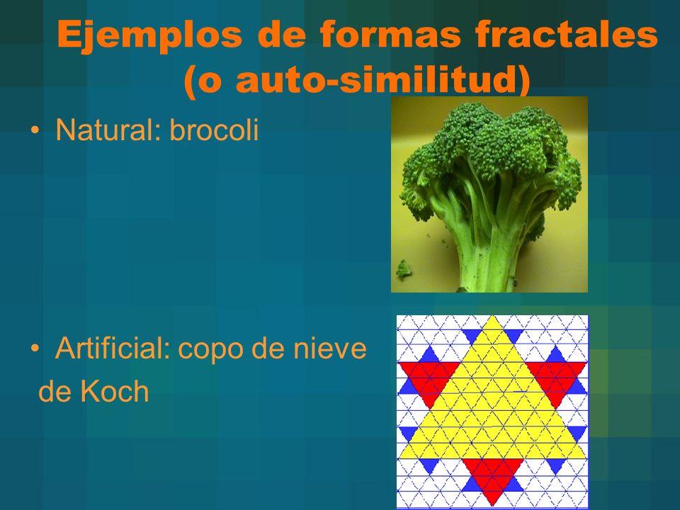 Ejemplos de formas fractales (o auto-similitud) Natural: brocoli Artificial: copo de nieve de Koch