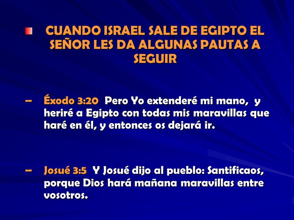 CUANDO ISRAEL SALE DE EGIPTO EL SEÑOR LES DA ALGUNAS PAUTAS A SEGUIR –Éxodo 3:20 Pero Yo extenderé mi mano, y heriré a Egipto con todas mis maravillas