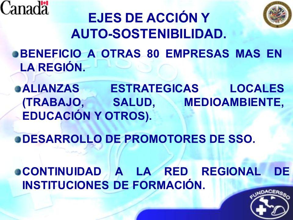 ALIANZAS ESTRATEGICAS LOCALES (TRABAJO, SALUD, MEDIOAMBIENTE, EDUCACIÓN Y OTROS). DESARROLLO DE PROMOTORES DE SSO. CONTINUIDAD A LA RED REGIONAL DE IN