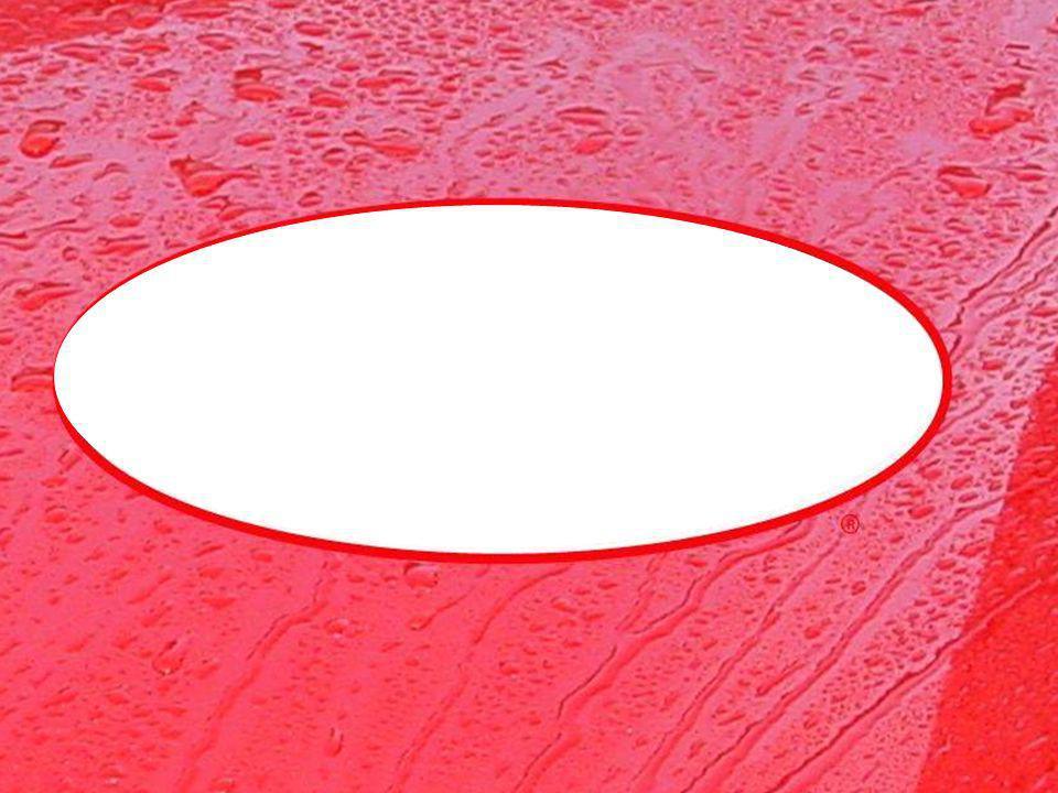 Plásticos Embellecedores Crea una capa anti-estática como nuevo, acabado mate en todos los interiores y exteriores de vinilo y plásticos de superficies para proporcionar un efecto de protección permanente.