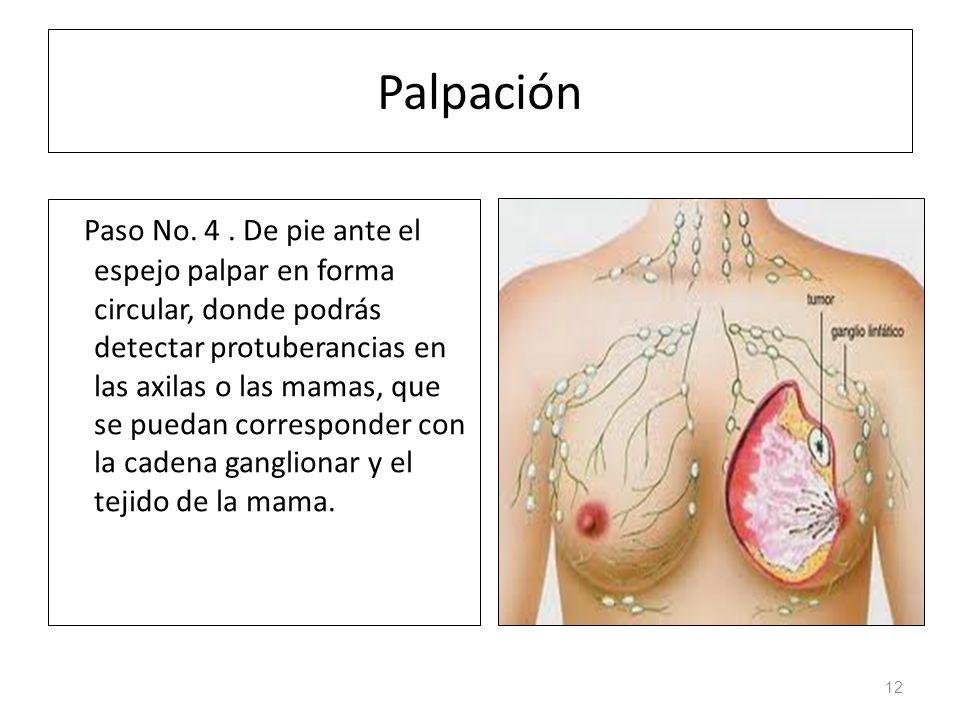 Palpación Paso No.4.