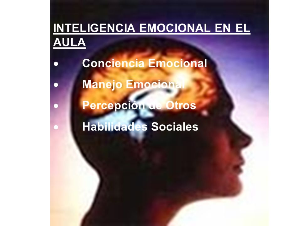 INTELIGENCIA EMOCIONAL EN EL AULA Conciencia Emocional Manejo Emocional Percepción de Otros Habilidades Sociales