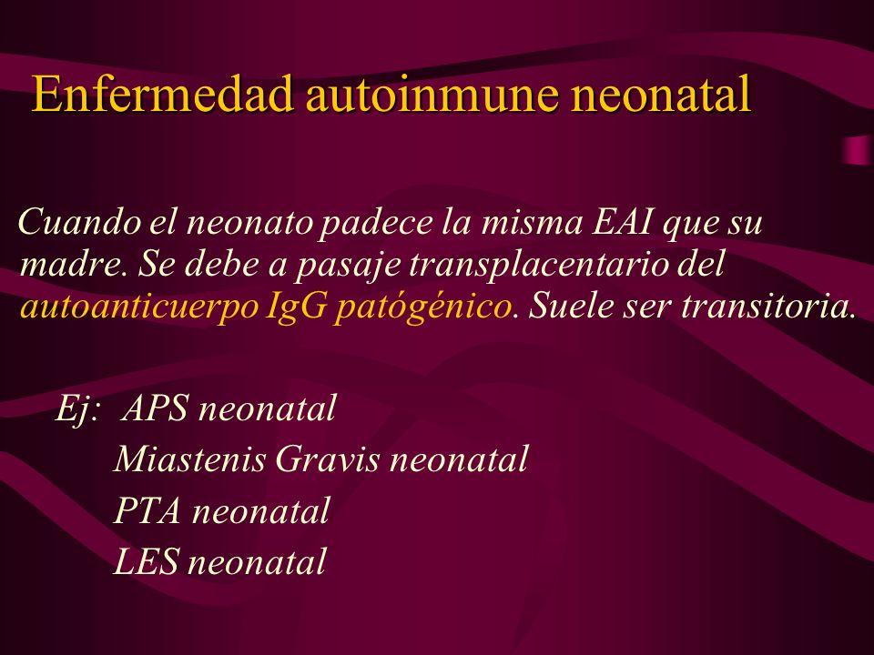 Enfermedad autoinmune neonatal Cuando el neonato padece la misma EAI que su madre. Se debe a pasaje transplacentario del autoanticuerpo IgG patógénico